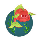 Red fish and a shell with a pearl Stock Image