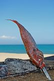 Red Fish skewered on a BBQ by the sea. Royalty Free Stock Image