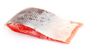 Red fish with squama isolated Stock Photography
