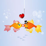 Red fishes in the water Royalty Free Stock Photo