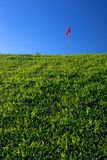 Red Flag. Grass hill on golf field with red flag and deep blue sky Royalty Free Stock Images