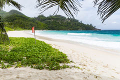 Red Flag At Anse Intendance, Mahe, Seychelles Royalty Free Stock Image
