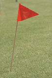 Red flag flutter in wind. Red flag on wooden stick on green grass flutter in wind Stock Photography
