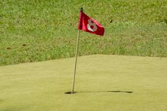 Red flag at the hole number 8. At the golf field Royalty Free Stock Image