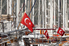 Red flags of Turkey Royalty Free Stock Photo