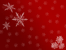 Red flake back. Red snow flake bakcground of christmas Stock Image