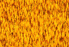Red flame fire texture backgrounds. Red flame fire texture background Royalty Free Stock Images