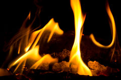 Red flame Royalty Free Stock Photo