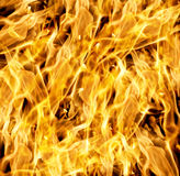 The red flames Stock Images