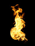The red flames Royalty Free Stock Images