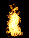 The red flames Royalty Free Stock Image