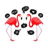 Red flamingos with speech bubbles icons. Vector illustration. Chat balloons. Funny Messages. Hello, wow, ok, like, hi stock illustration