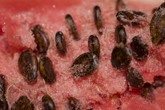 The red flesh of a watermelon with black seeds Stock Photo