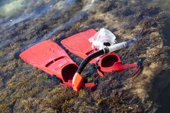 Red flippers on the coastline. Snorkeling gear for diver stock image