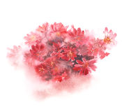Red floral bouquet with blurred color splash on white background. Hand-painted watercolor illustration stock illustration