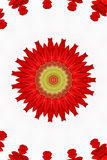 Red floral kaleidoscope Royalty Free Stock Photo