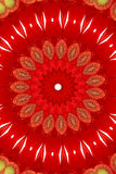 Red floral kaleidoscope Stock Photo