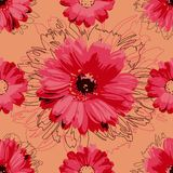 Red floral pattern, seamless. Daisies on an orange background vector illustration