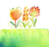Red floral rustic hand drawn illustration. Stock Photo