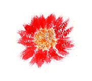 Red Flower. A simple, contemporary painting of a red flower from above Royalty Free Stock Photos