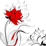 Red flower. S on white background Royalty Free Stock Photography