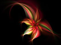 Red Flower. A fractal representing a stunning red flower Stock Images