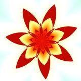 Red Flower. Abstract Red Fractal Flower - White Background - Seven Petals Stock Photos