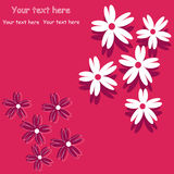 Red flower background for art projects Stock Photography