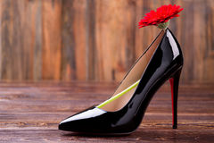 Red flower on black shoe. Footwear and gerbera on wood. Represent your style. Nature theme in fashion Royalty Free Stock Photo