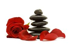 Red flower and black stones Royalty Free Stock Photo