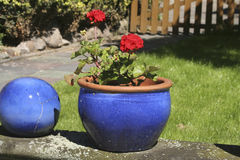 Red flower-blue pot. Two art flower pots Royalty Free Stock Image