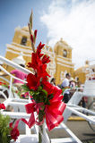 Red flower, blue sky and yello church in Trujillo, Peru Royalty Free Stock Photography