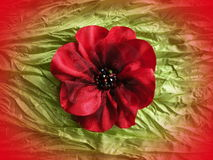 Red flower-brooch Stock Photo