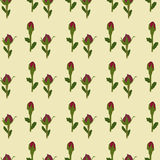 Red flower buds on  seamless wallpaper. Red flower buds on beige seamless wallpaper Royalty Free Stock Images
