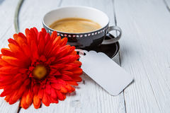 Red flower, cup of coffee Royalty Free Stock Image