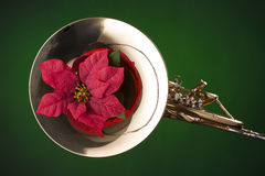 Red flower on French Horn. A gold brass French horn and red poinsettia flower isolated  against a spotlight green background Royalty Free Stock Image