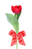 Red flower gift Royalty Free Stock Photo