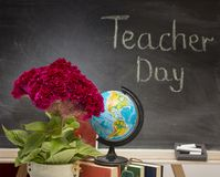 Red flower and a globe . Teacher  Day. Stock Photography