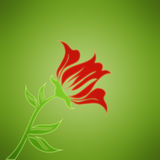 Red flower on green background. Red flower on green, gradient background Royalty Free Stock Photos