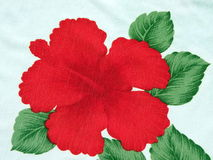 Free Red Flower Hibiscus Royalty Free Stock Photo - 14617305