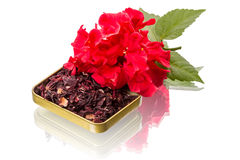 Red flower and hibiscus tea Royalty Free Stock Photo