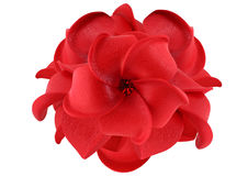 Red flower isolated on white. Red artificial flower isolated on white Stock Photos
