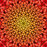 Red flower Kaleidoscope. Abstract kaleidoscope designed to relax in pc Stock Photography