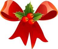 Red, Flower, Leaf, Fruit royalty free stock images