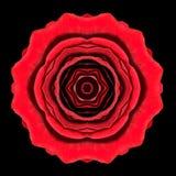 Red Flower Mandala Kaleidoscope Isolated on Black Royalty Free Stock Images