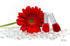 Red flower and nail polishes Royalty Free Stock Image