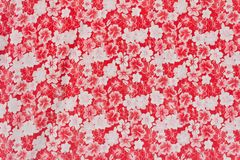 Red flower pattern. Royalty Free Stock Photography