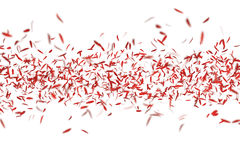 Red Flower Petals / White Background Stock Photo