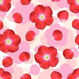 Red flower on seamless background. Red flower on seamless background of vector graphic art vector illustration