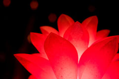 Red flower shaped lantern isolated on black Stock Photo